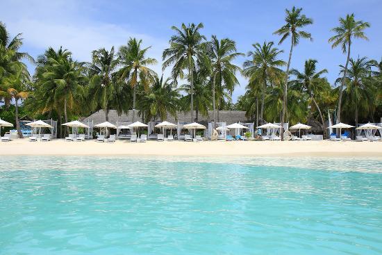Reethirah Island : Beach Club, playa principal