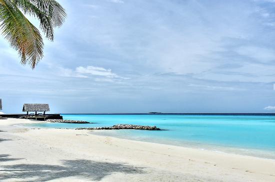 Reethirah Island : Playas de la isla