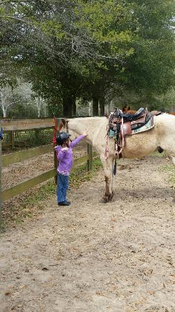 Horse Rides of Pensacola