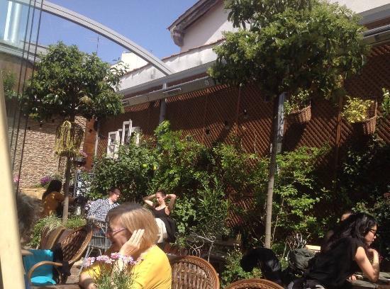 Img 20160326 wa0013 picture of jardin secreto for Jardin secreto