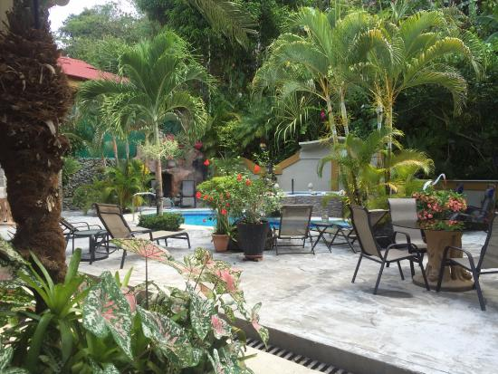 Coyaba Tropical Bed and Breakfast: The beautiful pool area.