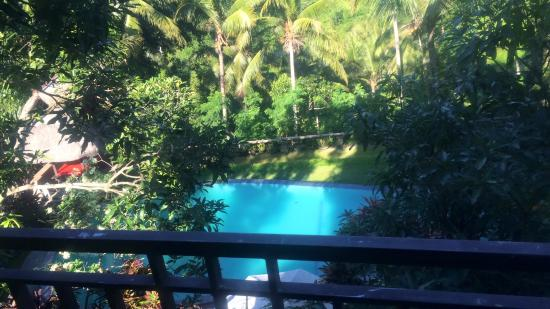 20160416 181844 large jpg picture of bucu view resort ubud rh tripadvisor co nz