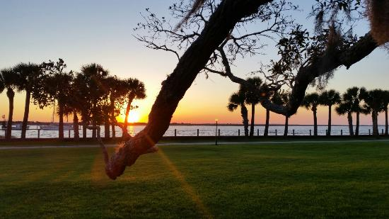 Golden Isles of Georgia, GA: 20160321_193133_large.jpg
