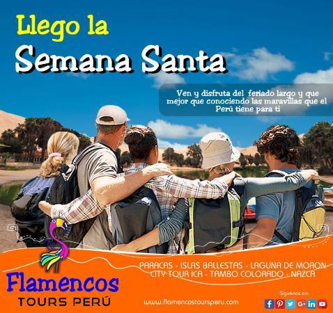 Flamencos Tours Peru