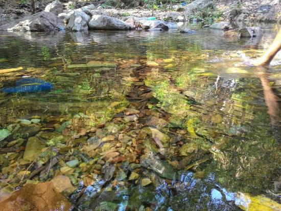 Srikalahasti, Indien: @Mulakonna waterfalls
