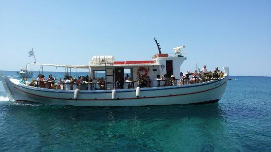 Delfinia boat tours - half day
