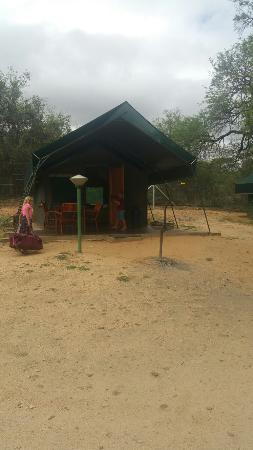 Skukuza Rest Camp: 20160322_114955_large.jpg