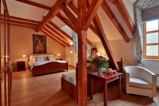 Romantic Hotel Mlyn Karlstejn