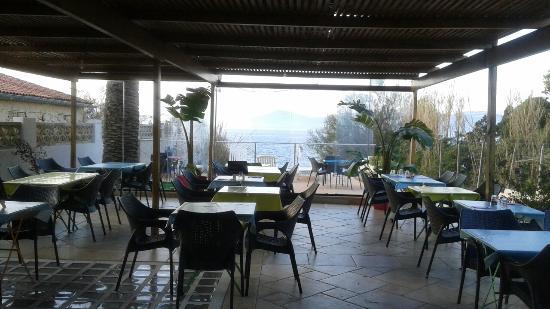 plats copieux bons recommander photo de restaurant le solarium giens tripadvisor. Black Bedroom Furniture Sets. Home Design Ideas