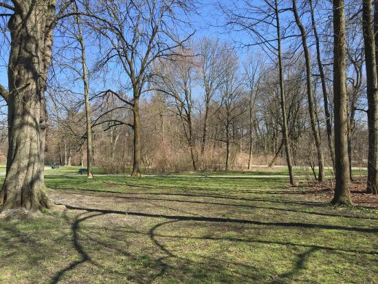 Jard n ingl s picture of english garden munich for Jardin ingles