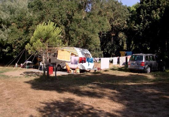 Camping de la plage updated 2017 campground reviews - Restaurant la table du mareyeur port grimaud ...