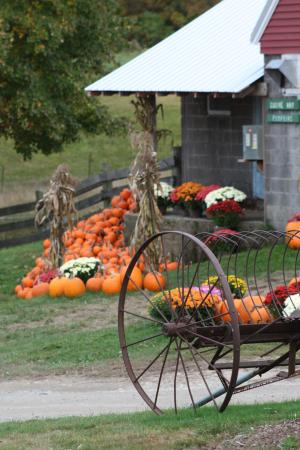 Lee, NH: The Farm Stand