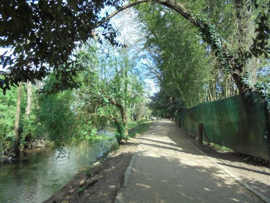 Paseo Fluvial del Rio Gafos