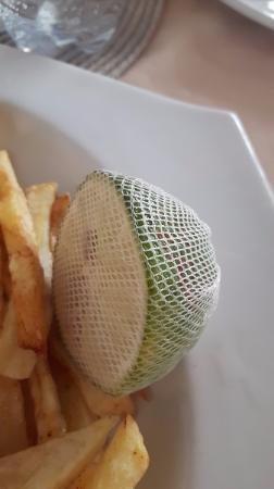 The Bay Restaurant: Lime covered in net to prevent seeds from falling in food