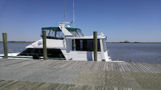 The Moorings at Carrabelle: Dolphins, Fu-Lyn-Sue charter boat.