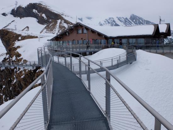 Grindelwald, Svizzera: Cliff walk. Going back to the resto.