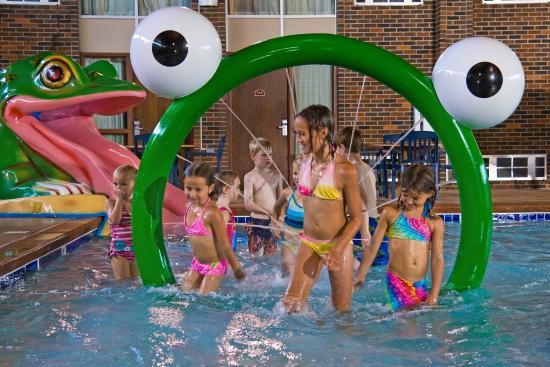 Best Western Ramkota Hotel Pool Frog Water Ring
