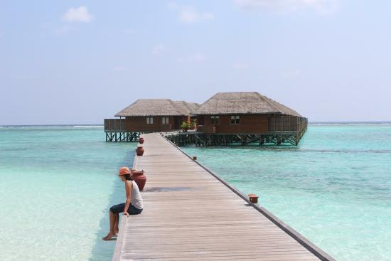 Meeru Island Resort & Spa Photo