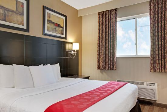 Ramada Bronx: King Room