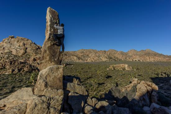 Lost Horse Valley: Trying to climb to top of Aiguille de Joshua Tree (aka The Finger of Hercules)