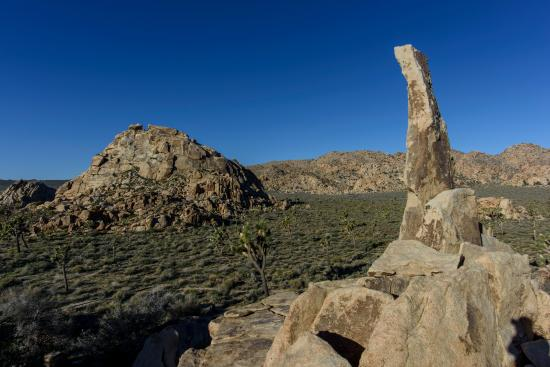 Lost Horse Valley: Aiguille de Joshua Tree (aka The Finger of Hercules)