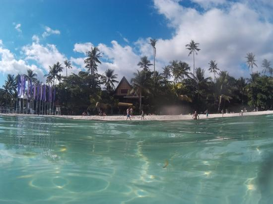 Alona Tropical Beach Resort: Hotel visto desde el mar