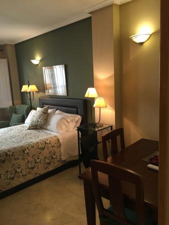 Apartamentos Caballero de Gracia : Estudio