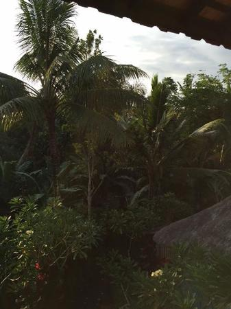 Ubud Sari Health Resort: Outside