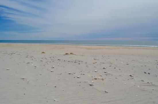 Westhampton Beach, NY: The Atlantic Ocean side of Cupsogue
