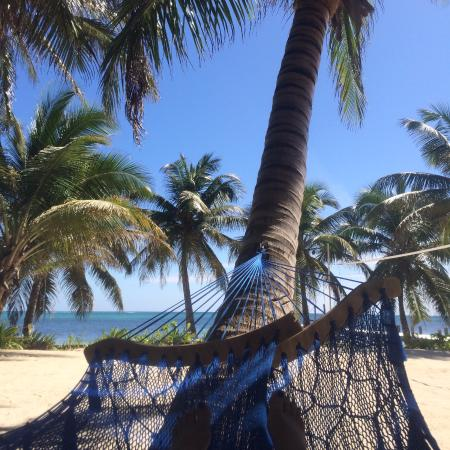 Ambergris Divers Resort: The resort had a couple of hammocks on the grounds. Great place to relax and/or nap.