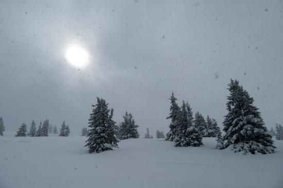 Murau, Austria: snow - snow - snow, but no snow guns
