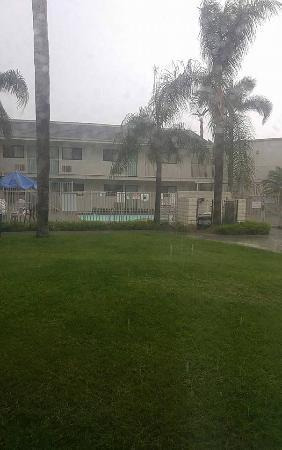 Motel 6 Anaheim Stadium - Orange : Desde mi habitación, estaba lloviendo