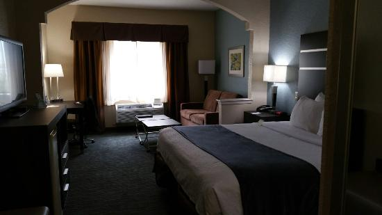 Photo of BEST WESTERN PLUS Northwest Inn & Suites Houston