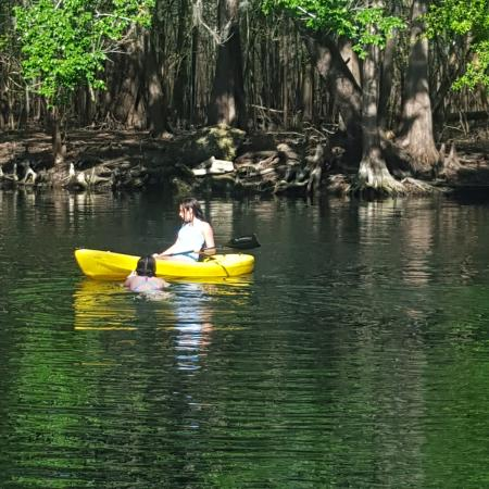 Suwannee River State Park Photo