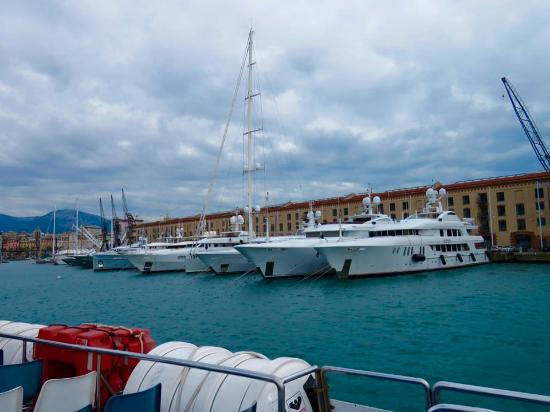 Marina Genova: Incredible, boat trip the marina of Genoa, where you can see varieties of large luxury yachts. T