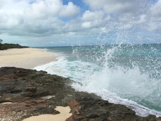 La Vista Azul Resort: Malcom Beach