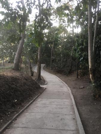Bicentennial Park: photo1.jpg