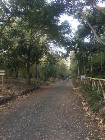 Bicentennial Park: photo3.jpg