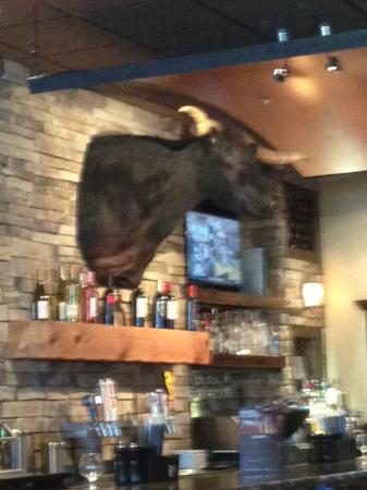 LongHorn Steakhouse: Bar (and Bull)