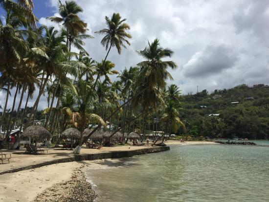 Marigot Beach Club and Dive Resort-billede