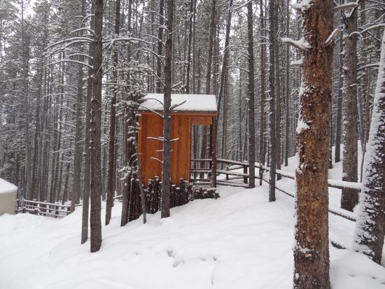 Tennessee Pass Sleep Yurts : The outhouse