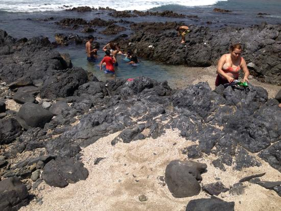 A family enjoying a tide pool in front of Dona Martha's