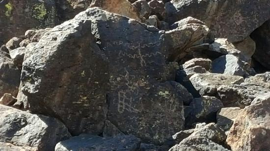 Deer Valley Petroglyph Preserve: 20160318_124349_large.jpg