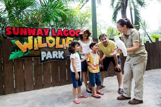 Petaling Jaya, Malaysia: Wildlife Theatre