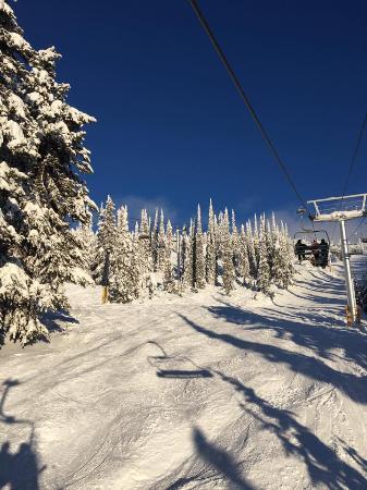 Bluebird Day At White Ski Resort