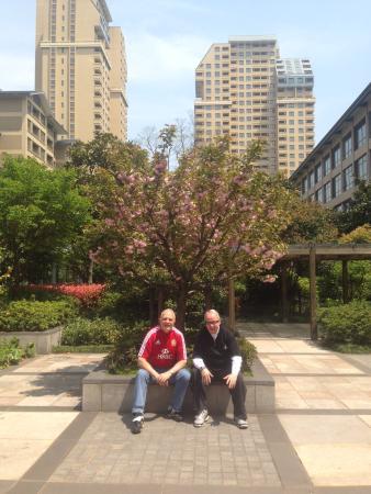 marvelous japanese gardens picture of belgravia touwaen serviced rh tripadvisor com
