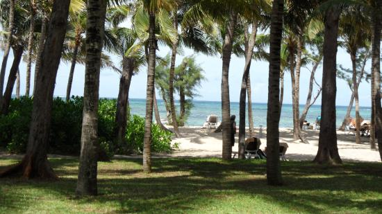 Hotel Riu Le Morne: Opened the curtains every morning to this wonderful view