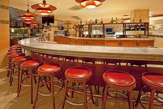 Crowne Plaza Chicago - The Metro: Bar and Lounge