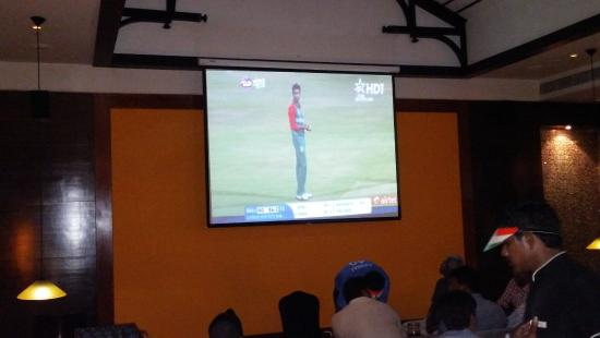 Mustang : Cricket Live streaming