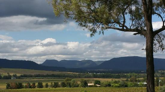 Broke, Australia: Dolcetto with a view!